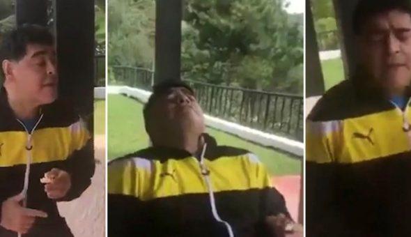 Novia de Maradona se sumará a Dorados