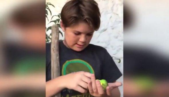 Habló el niño protagonista del viral de Chimuelo
