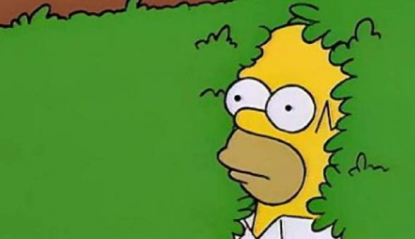 [VIDEO] Homero Simpson usó su propio gif durante episodio de la serie