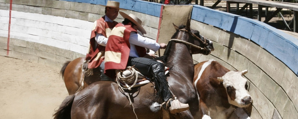 rodeo Chile