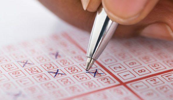 lotería dólar