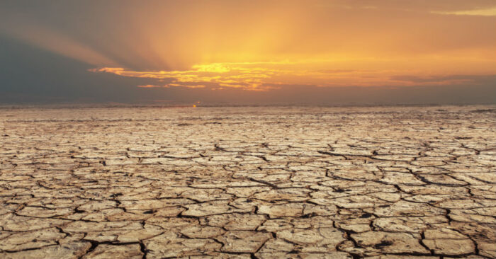 Científicos predicen el colapso de la humanidad en los próximos 40 años