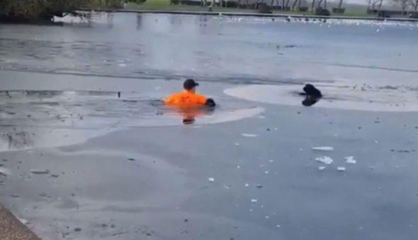 hombre perro lago