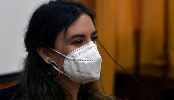 Camila Vallejo Piñera Acusacion Web