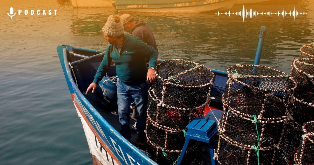 Pesca Artesanal Industrial Agencia Uno Card Web
